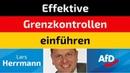 Lars Herrmann (AfD) - Effektive Grenzkontrollen einführen