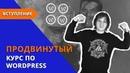 Продвинутый курс по созданию сайта на WordPress Введение.