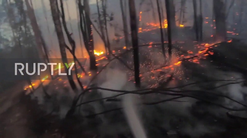 Australia Firefighters tackle flames near Victoria's Whitfield