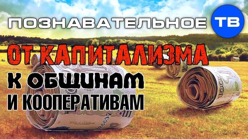 От капитализма к общинам и кооперативам Познавательное ТВ Сергей Грошев