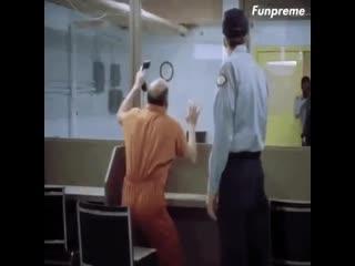 Смешные видео приколы