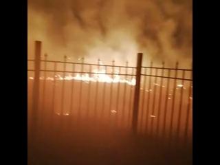 В Новомосковске из-за пала травы чуть не сгорел детский сад