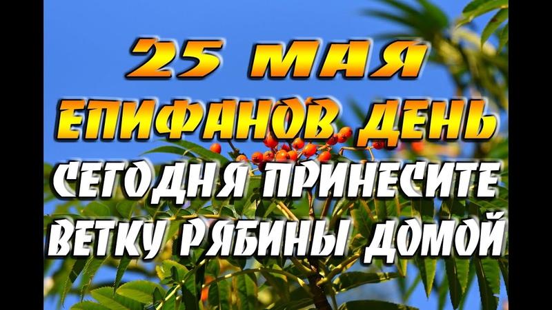 25 мая - народный праздник Епифанов день, Рябиновка/ Зачем в этот день приносили ветку рябины домой?