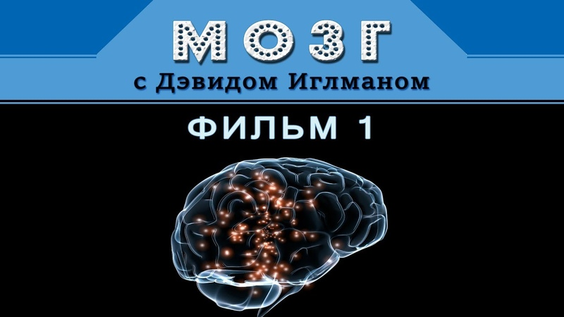 Мозг с Дэвидом Иглманом Фильм 1 Что такое реальность Док Фильм HD 720p