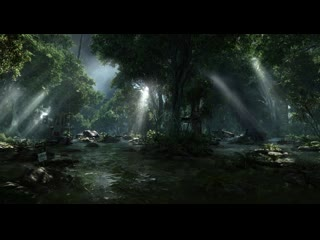 Post apocalyptic forest