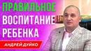ПРАВИЛЬНОЕ ВОСПИТАНИЕ РЕБЕНКА. Андрей Дуйко / Школа Кайлас / 1 ступень 2018