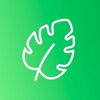Логотип БИОЛОГИЯ / СОТКА / ОГЭ 2020