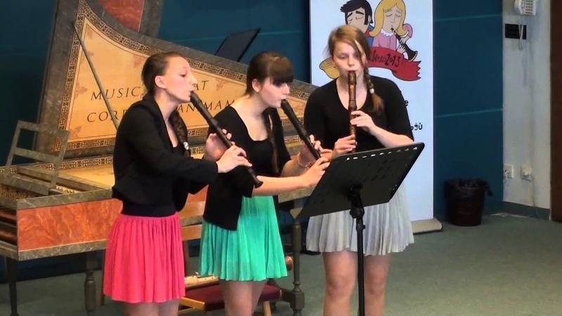 Trio zobcových fléten ZUŠ Veveří | Soutěž ZUŠ, Liberec 2013