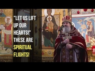 We need to learn to fly - here and now (Fr. Andrei)