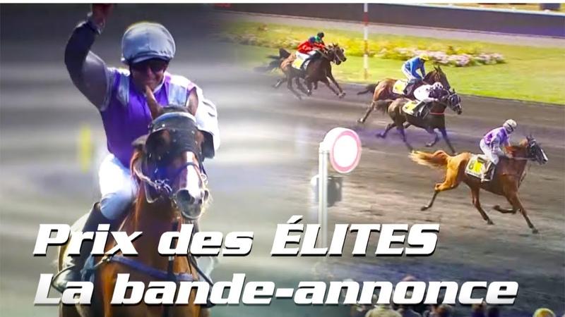 Prix des Elites Dimanche 29 Septembre à Vincennes Hippodrome de Paris