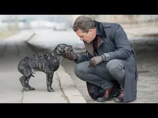 Цепной пёс (2017)  Трейлер