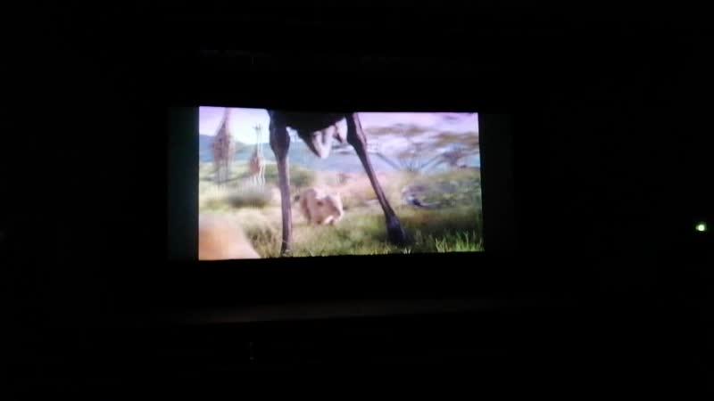 Король Львов 01 побег