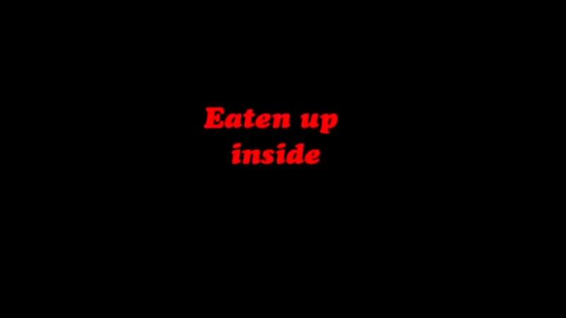 Korn eaten up inside
