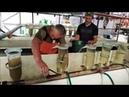 Инкубация икры толстолоба в аппарате Вейса Как это сделать