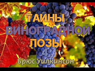 Б.УИЛКИНСОН - ТАЙНЫ ВИНОГРАДНОЙ ЛОЗЫ - 4 ЧАСТЬ