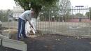На ул.Луначарского чтобы освободить деревья из плена, рабочим пришлось разрезать асфальт.