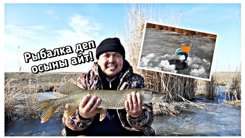Рыбалка на жерлицы 2020 Қысқы балық аулау 9