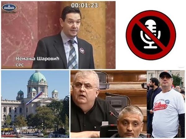 Skupština: Isključili mikrofon Šaroviću, rekao da su Čanak, Čeda i Sergej lažna opozicija