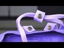 Обзор на рюкзак Канкен Purple Mauve