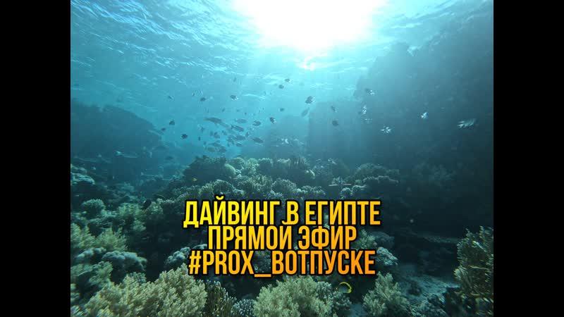 Live ProX Экстремальные виды спорта Челябинск Экстрим