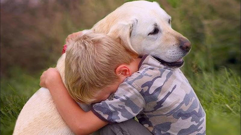 Человек и животные Истории удивительной любви 2