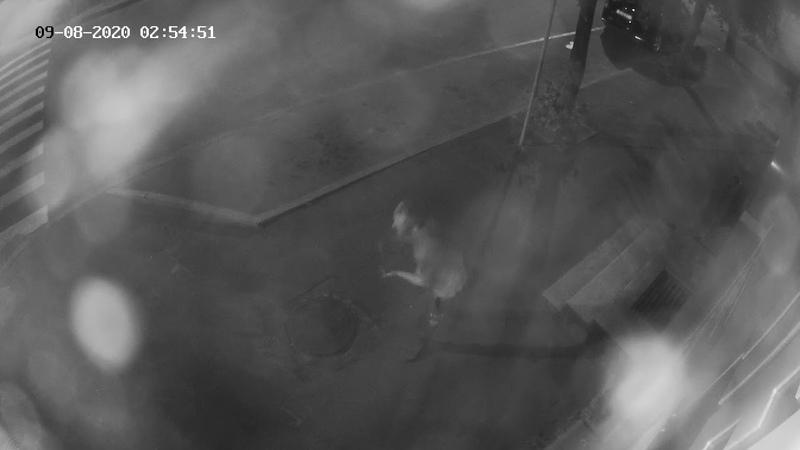 Стекло в машине разбили в Барановичах