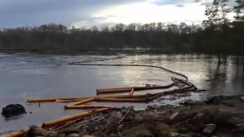Уникальное природное явление лес погружается в карстовую воронку