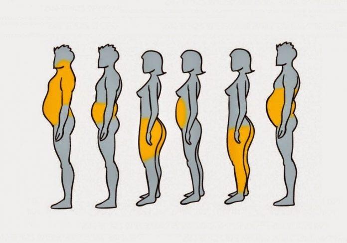 Вот почему вы толстеете в определенных местах и как с этим бороться