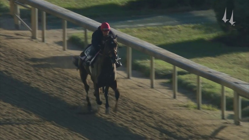 Dennis' Moment - Breeders' Cup Work 10.18.19