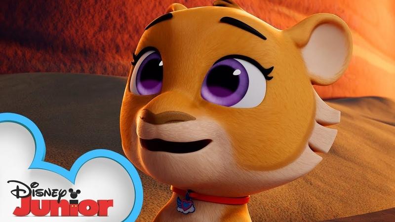 Linus the Lion Profile 🦁   T.O.T.S.  Disney Junior
