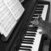 МузыкаМузыка