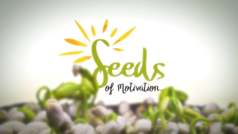 How to empower yourself to perform well succeed? | Seeds of Motivation | Awakening TV