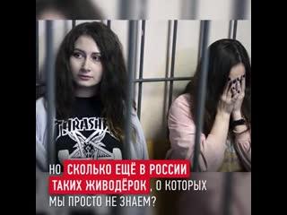 Две юные девушки издевались над щенками и котятами. Пора такое остановить!