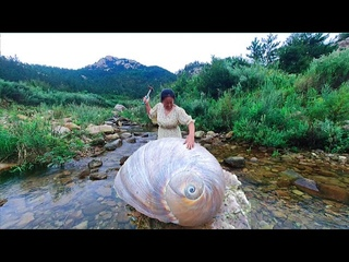 The pearl hunter captured a bunch of huge cat-eye snails. Smash open to find pearls 宝石,珠宝,珍珠,水晶。