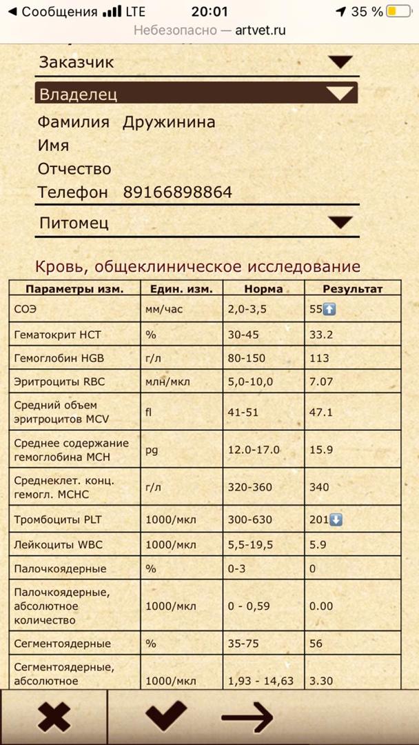 Tn-8RLHCEeo.jpg?size=608x1080&quality=96