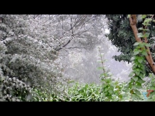 Abnormal snow in Victoria for September, Macedonia. Natural disasters. Climate Change. Weather. Снег