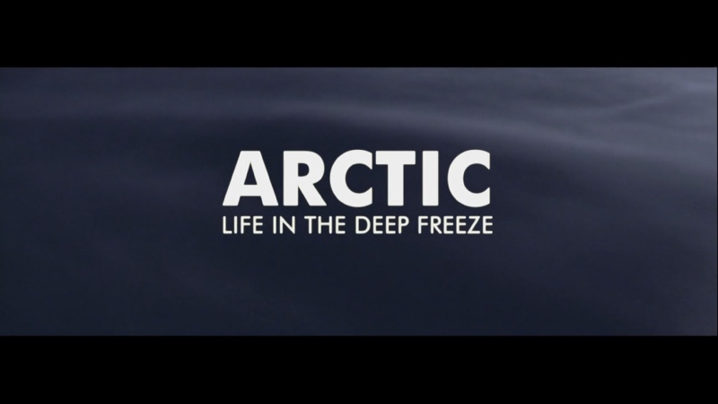 BBC Планета людей Часть 3 Арктика Жизнь В Глубокой Заморозке Human Planet Arctic Life In the Deep Freeze HD