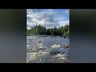 Video by Larisa Mizeria