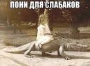 Фотоальбом Катерины Юриной