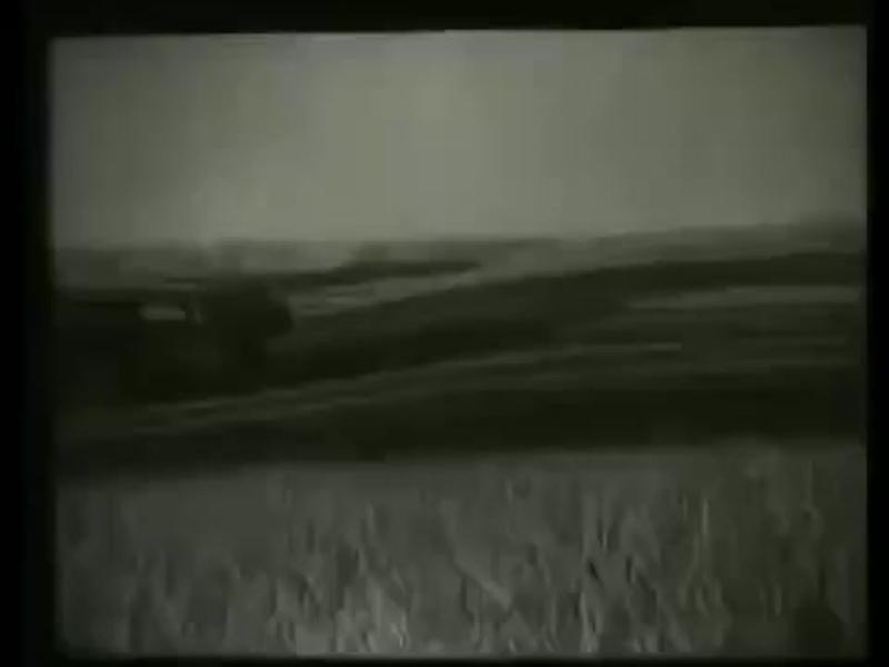 В брянском полесье (1930)