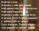 Шинкоренко Светлана   Москва   34