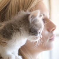Фотография профиля Алевтины Морошкиной ВКонтакте