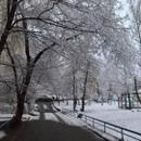 Анастасия Аврова фотография #13