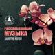 Mindfulness Meditation Music Spa Maestro - Музыка для расслабления