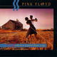 Pink Floyd - Shine On You Crazy Diamond (Pt. One) [1-5]