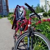 Прокат велосипеда Jamis с детским креслом + детский шлем