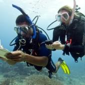 Курс PADI Underwater Navigation