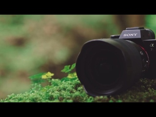Sony ¦ α ¦ α7R IV ¦ Product Feature