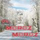 Песняры - Падают снежинки