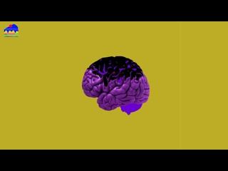 "[FREE] LIL BABY DABABY DRAKE MIGOS GUNNA Trap Type Beat 2021 Instrumental - ""TRY"""